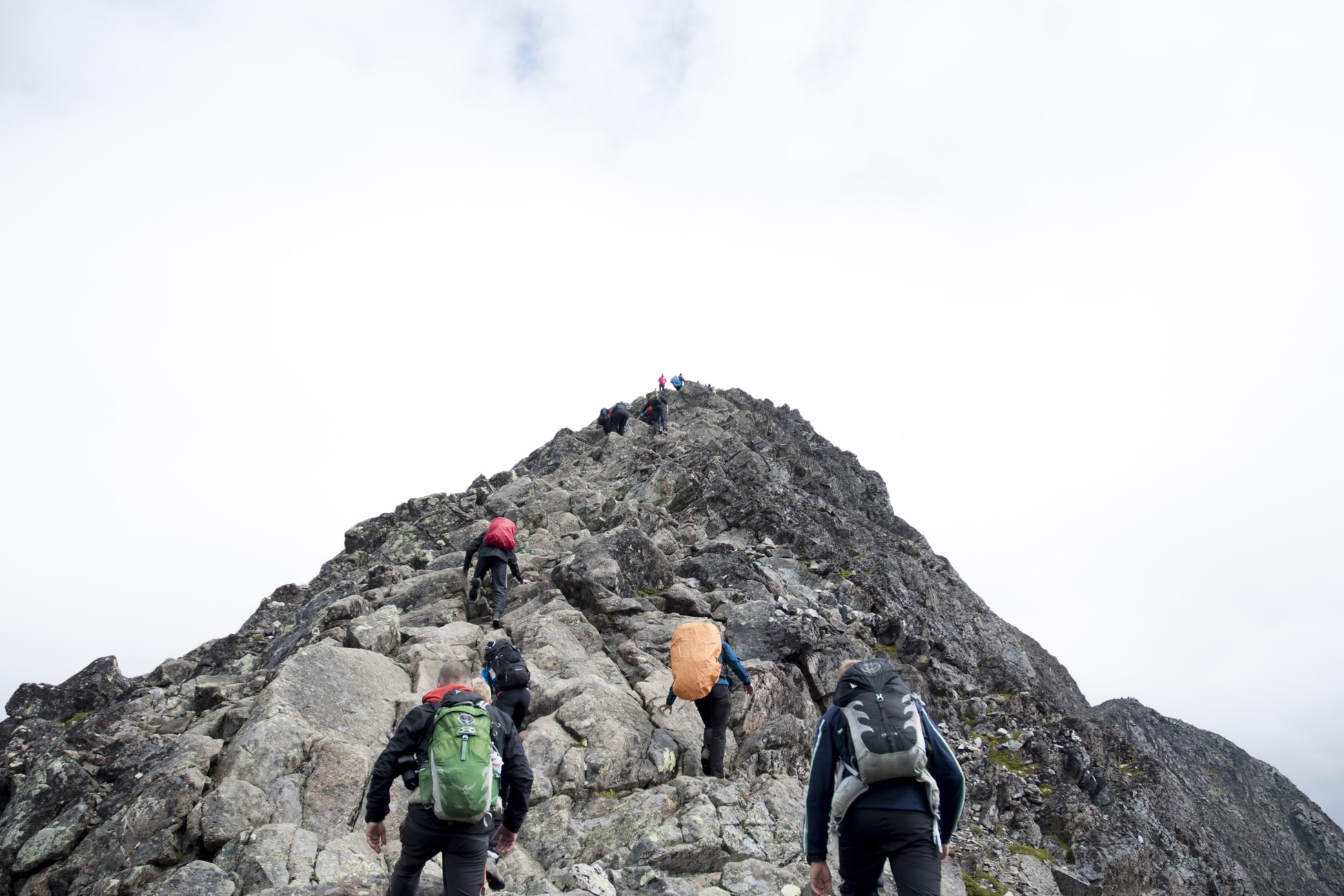 A group of hikers climbing a rock